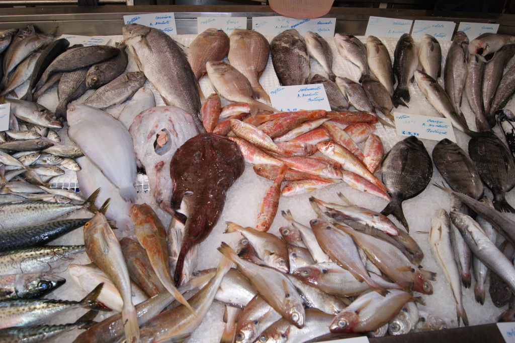 Seafood from the Atlantic coast of Portugal
